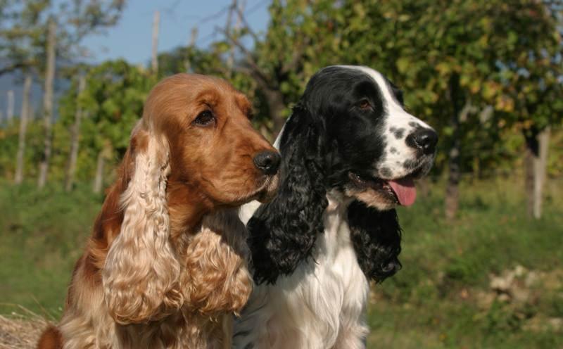 мужчина держит штаны